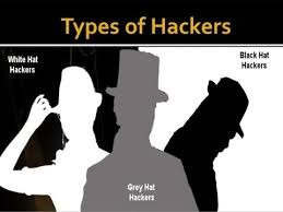 Who are White-Hat Hackers?